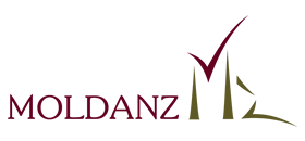 stie_logo_moldanz_smll